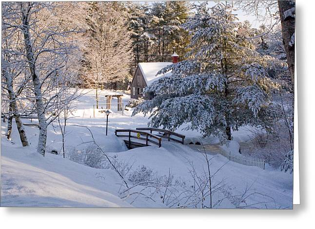 New England House And Forest In The Snow Greeting Card by David Thompson