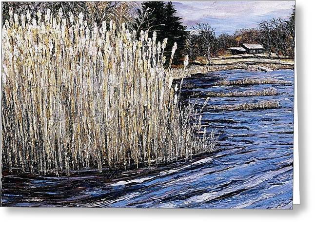 New England Pond Greeting Card by Richard Nowak