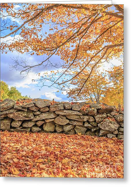 New England Stone Wall With Fall Foliage Greeting Card