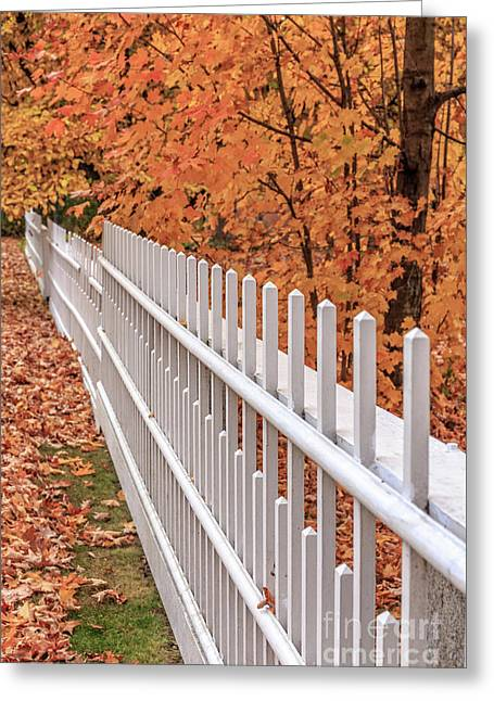 New England White Picket Fence With Fall Foliage Greeting Card by Edward Fielding