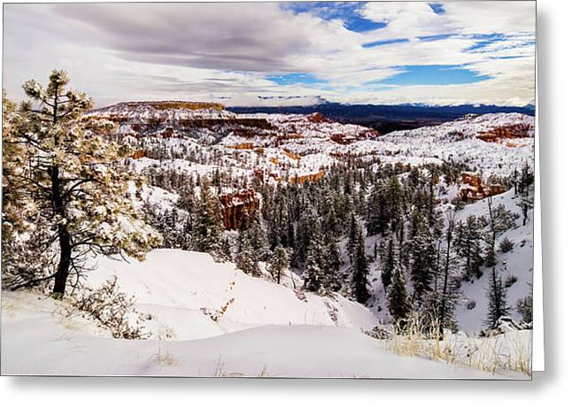 New Fallen Snow On Boat Mesa - Bryce Canyon Greeting Card