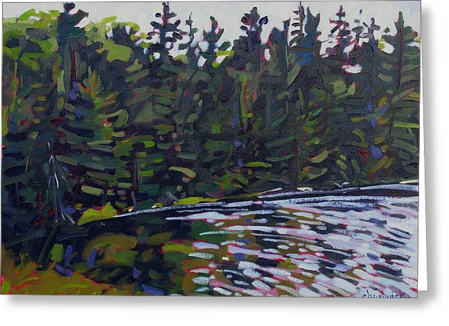 New Found Lake Greeting Card by Phil Chadwick