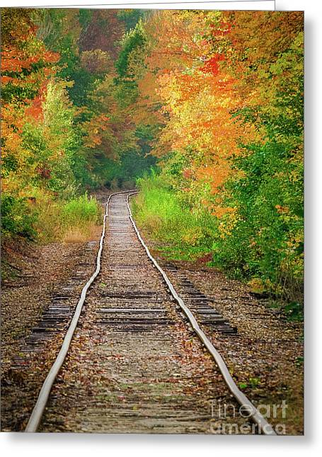 New Hampshire Train Tracks To Foliage Greeting Card