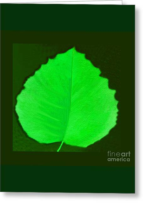New Leaf Greeting Card by Helena Tiainen