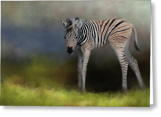 New Life 2 Baby Zebra Wildlife Art By Jai Johnson Greeting Card by Jai Johnson