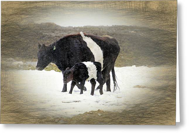 New Life In A Winter Snowfall Greeting Card by Donna Kennedy