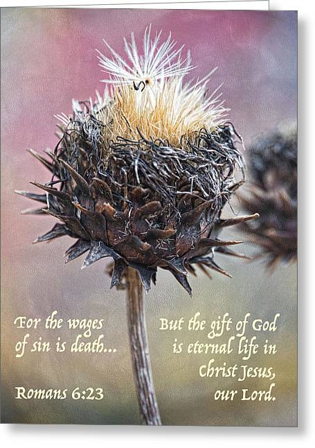 New Life Romans 6 Greeting Card by Sharon McConnell