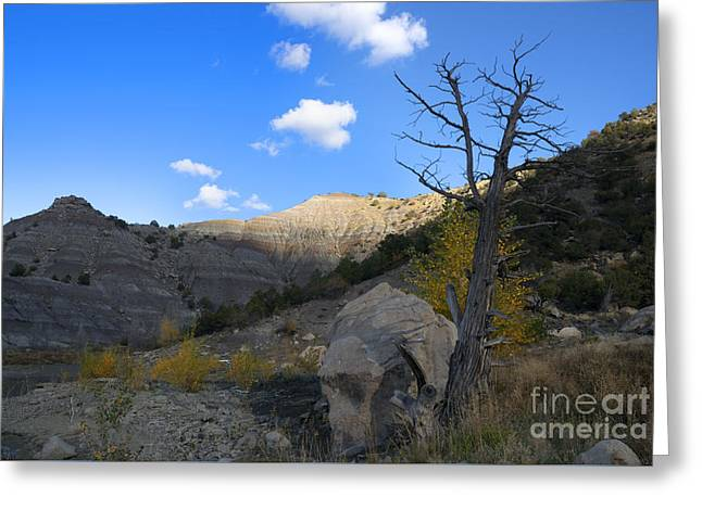 New Mexico Badlands Greeting Card by Jerry McElroy