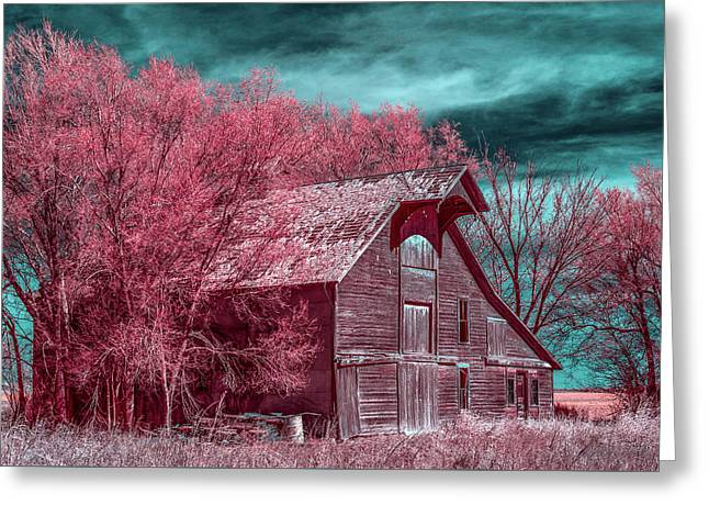 New Mexico Barn Infrared Greeting Card by Paul Freidlund