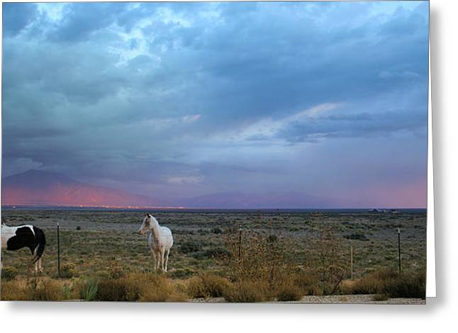 New Mexico Storms Greeting Card by Heidi Hermes