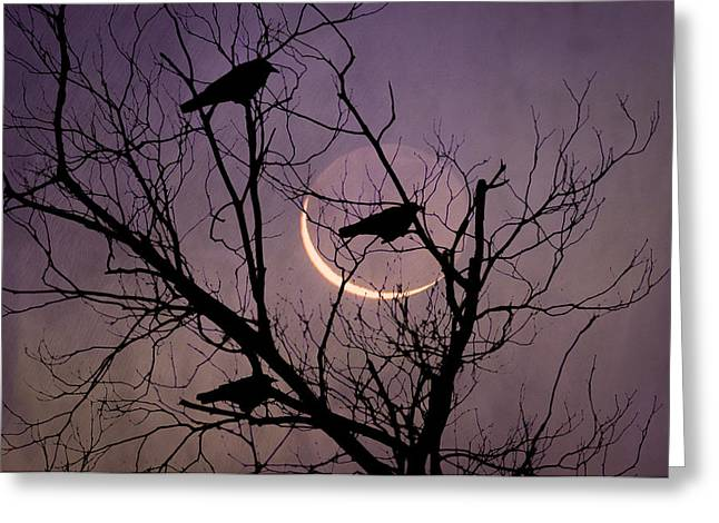New Moon Greeting Card by Bill Cannon