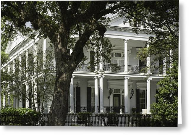 New Orleans Mansion Greeting Card by Anne Witmer