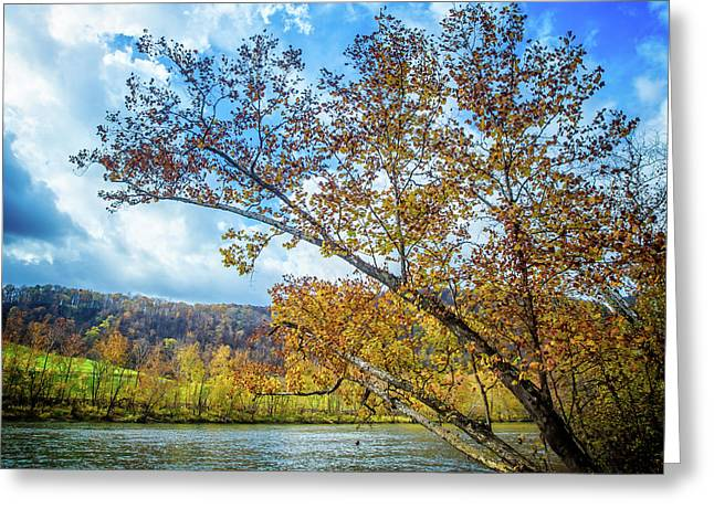 New River In Fall Greeting Card