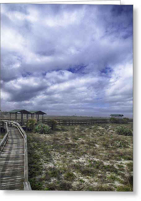 New Smyrna Beach Dunes Greeting Card by Rob Wilson