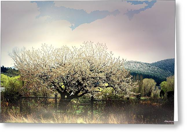 Greeting Card featuring the photograph New Snow In El Valle by Anastasia Savage Ealy