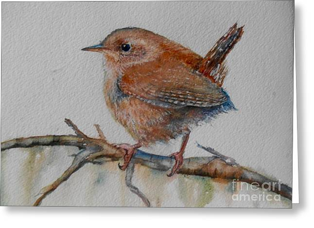 New Year Wren Greeting Card by Patricia Pushaw