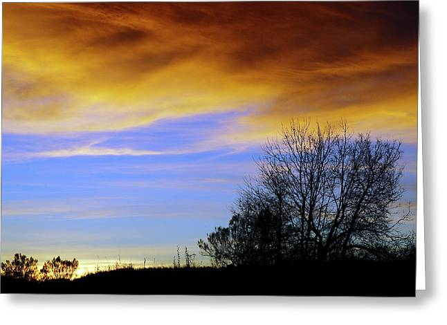New Year's Sunset Greeting Card by Bill Morgenstern