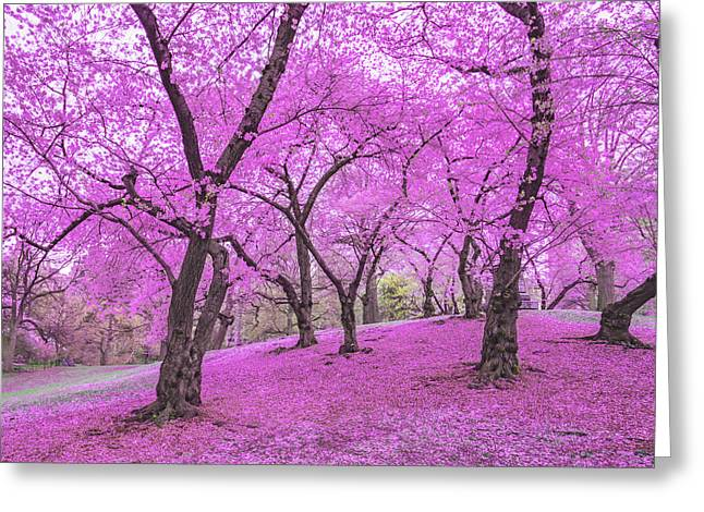 New York City Springtime Greeting Card