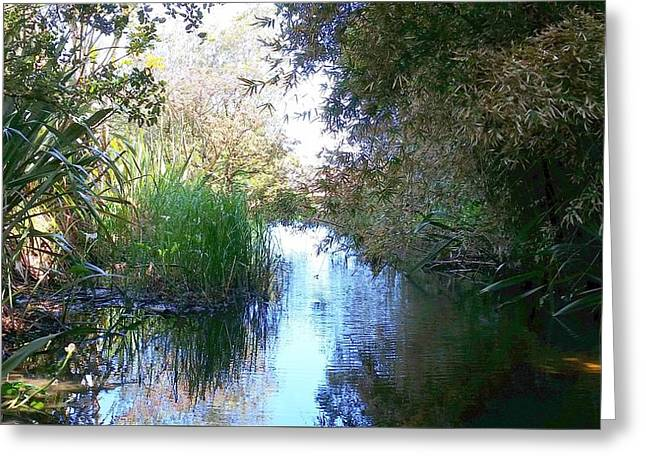 New Zealand - Karekare Beach Stream Greeting Card by Jeffrey Shaw