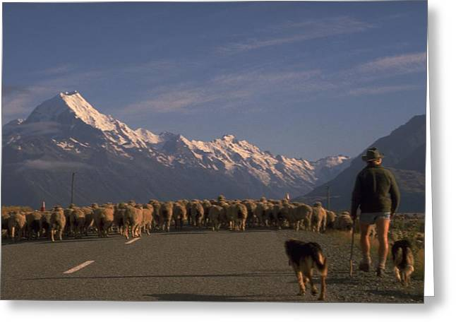 New Zealand Mt Cook Greeting Card