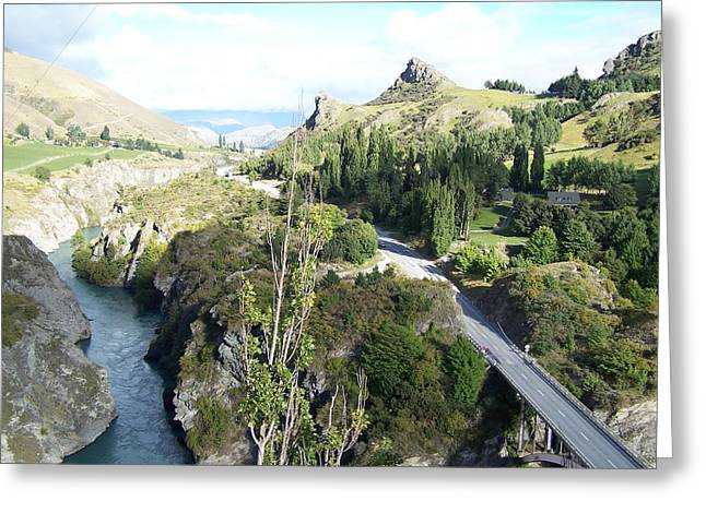 New Zealand Scene Greeting Card by Constance DRESCHER