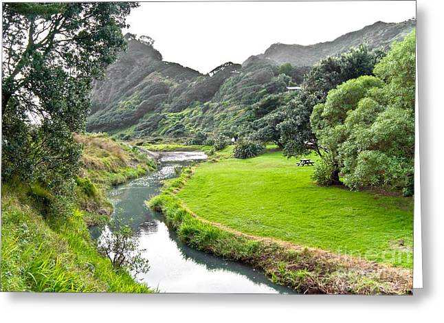 Greeting Card featuring the photograph New Zealand Scenery by Yurix Sardinelly