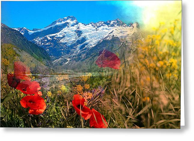 New Zealand Southern Alps Montage Greeting Card