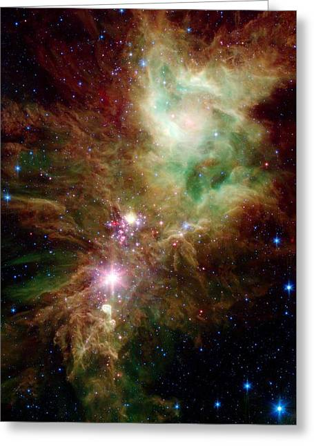 Newborn Stars Greeting Card by American School