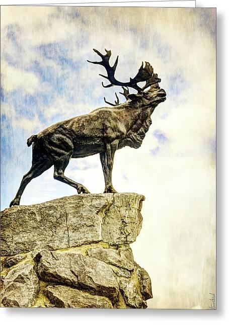 Newfoundland Caribou At Beaumont-hamel - Vintage Version Greeting Card by Weston Westmoreland