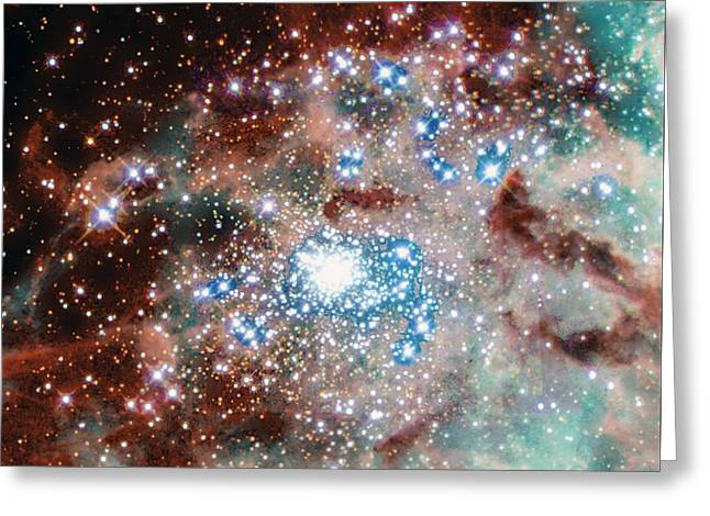 Newly Formed Stars In The Doradus Nebula Greeting Card by American School