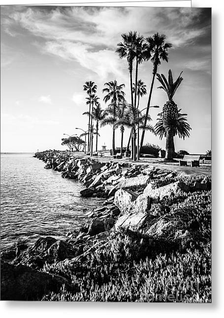 Newport Beach Jetty Black And White Picture Greeting Card