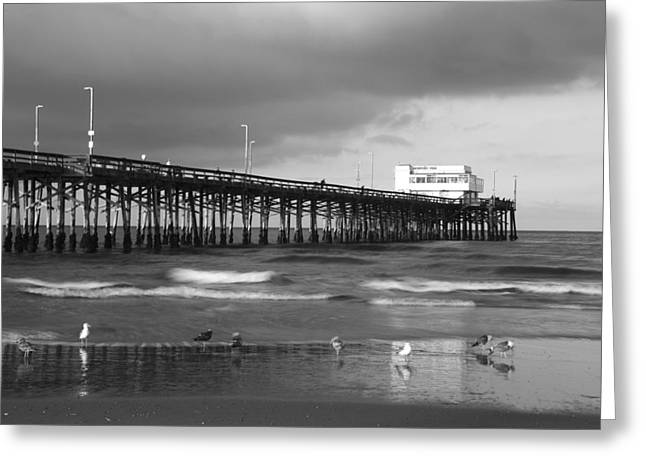 Newport Pier Greeting Card