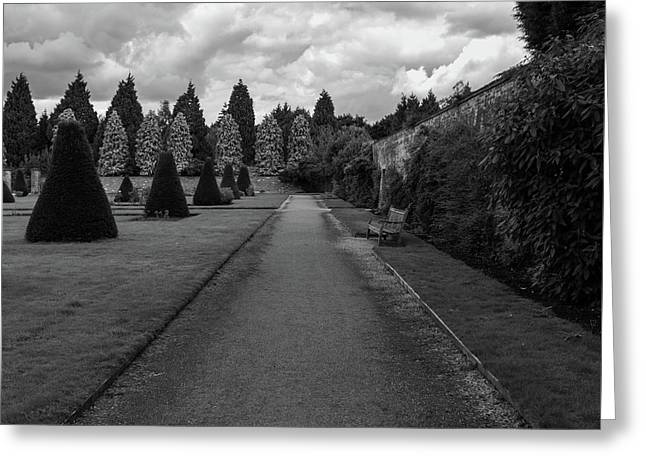 Newstead Abbey Country Garden Gravel Path Greeting Card