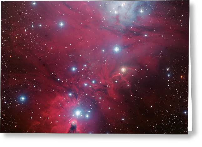 Ngc 2264 And The Christmas Tree Star Cluster Greeting Card by Eso