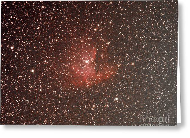 Ngc 281 Pacman Nebula Greeting Card by Robert Davies