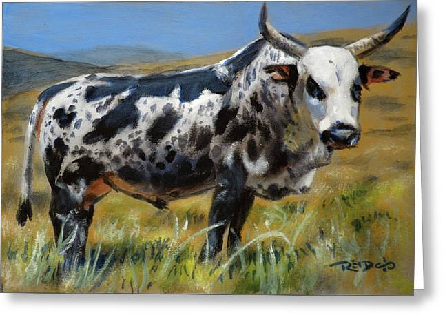 Nguni Bull Greeting Card
