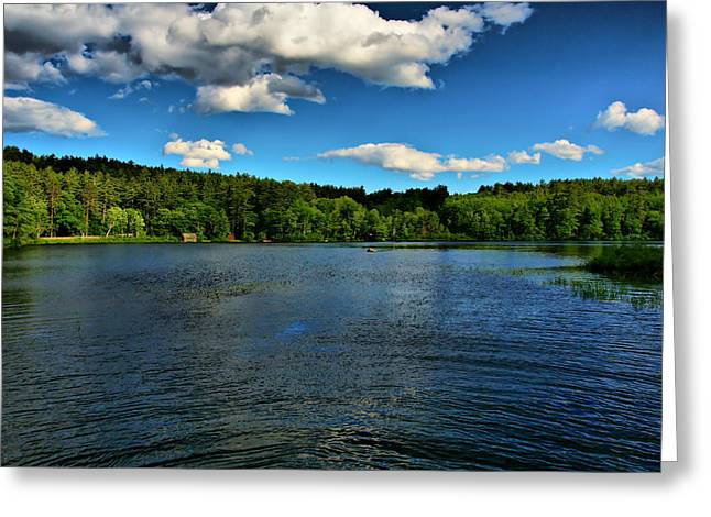 Nh Spring Landscape Tamworth 2 Greeting Card by Edward Myers