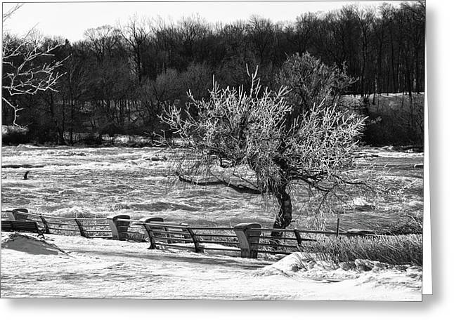Greeting Card featuring the photograph Niagara Falls Ice 4514 by Guy Whiteley