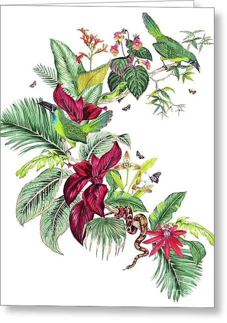 Nicaragua Placement Greeting Card by Jacqueline Colley
