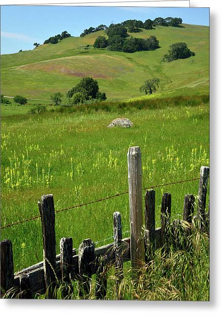 Nicasio Fence And Hills In Spring 2 Greeting Card by Kathy Yates
