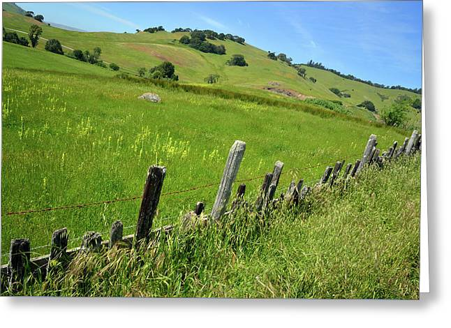 Nicasio Fence And Hills In Spring Greeting Card by Kathy Yates