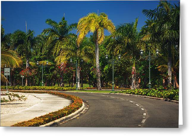 Nice Asfalt Road With Palm Trees Against The Blue Sky Greeting Card by Valentin Valkov