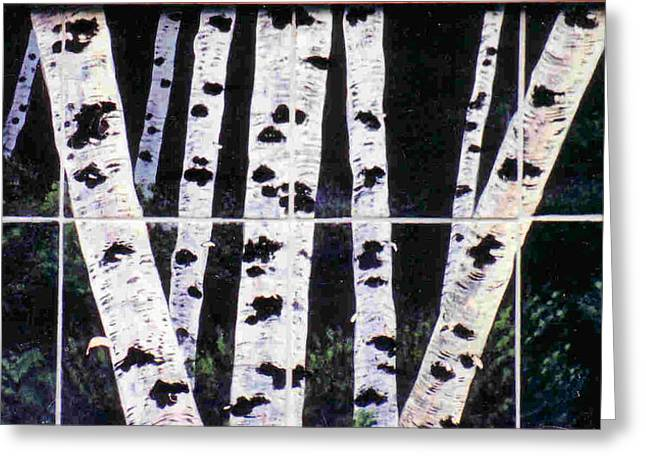 Night Birches Greeting Card by Dy Witt