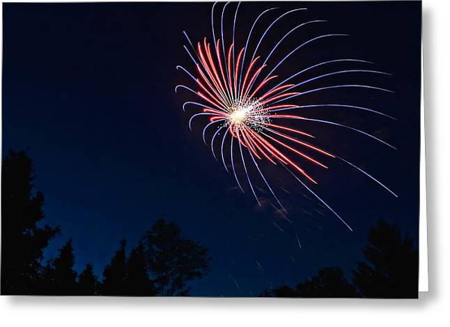 Blue Fireworks Greeting Cards - Night Bloom Greeting Card by Steve Harrington