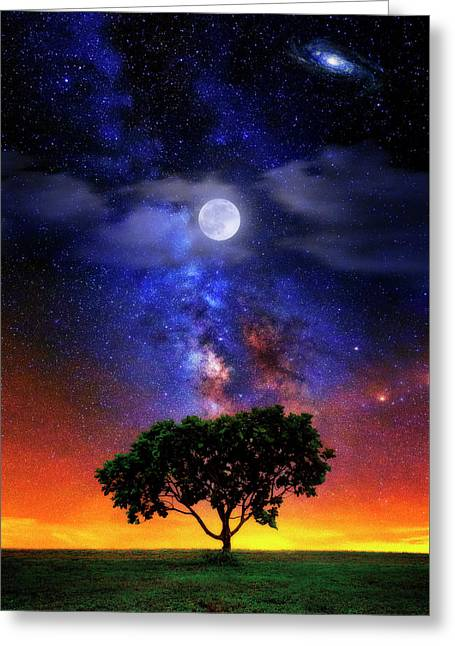 Greeting Card featuring the photograph Night Colors by Justin Kelefas