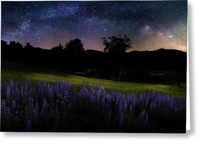 Night Flowers Greeting Card by Bill Wakeley