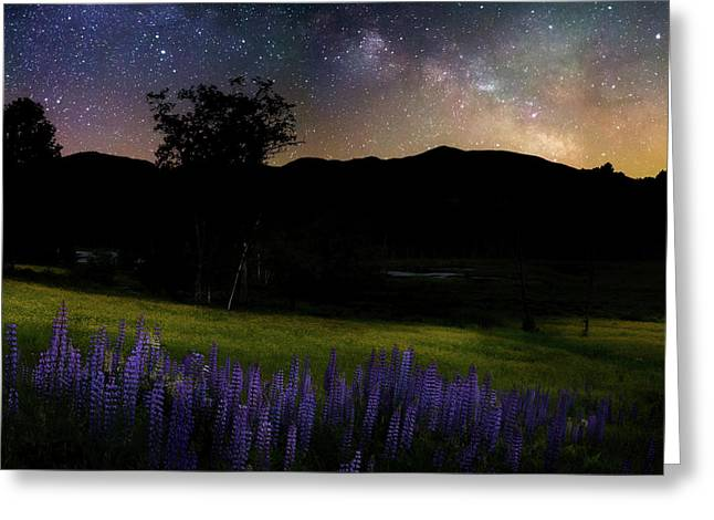 Greeting Card featuring the photograph Night Flowers Square by Bill Wakeley