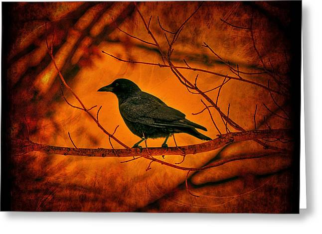 Night Guard Greeting Card by Evelina Kremsdorf