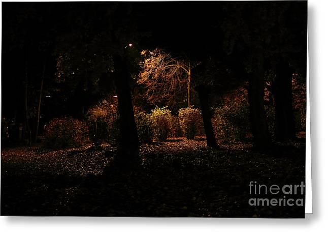 Night In The Park  Greeting Card