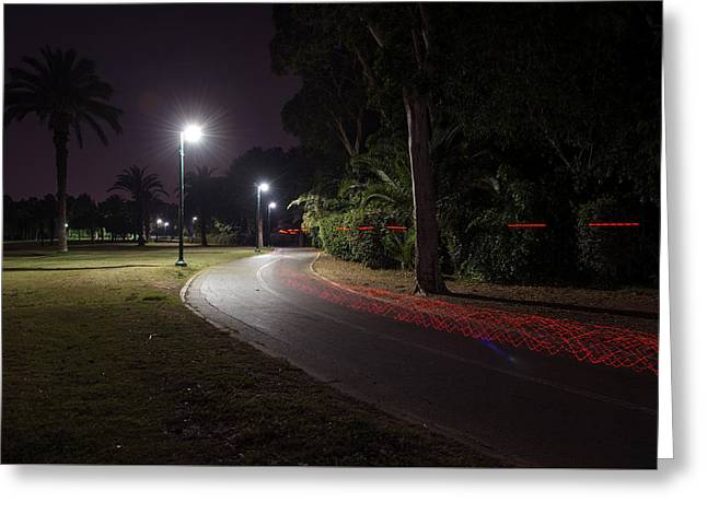 Greeting Card featuring the photograph Night In The Park by Dubi Roman
